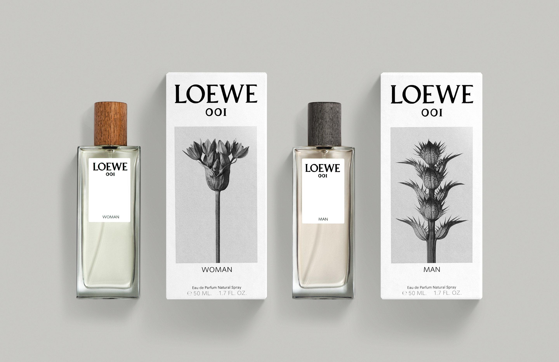dja-loewe-2016-001-d
